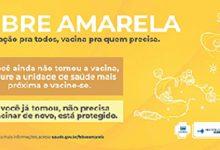 Campanha para vacinação contra Febre Amarela